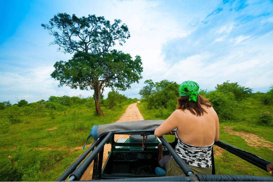 What you need to know when planning a Safari